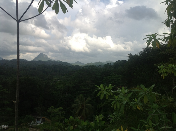 View of Sinharja rainforest